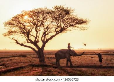SURIN, THAILAND - MAY 15 2016: Elephant mahout at ban ta klang, elephant village, surin province, Thailand