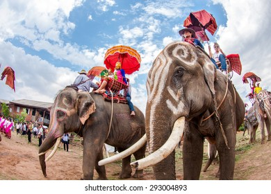 SURIN, THAILAND, MAY 16:Ordination Parade on Elephant's Back Festival is when elephants parade and carry Novice monk on their backs at Wat Chang Sawang to Moon river on May16, 2011 in Surin, Thailand.