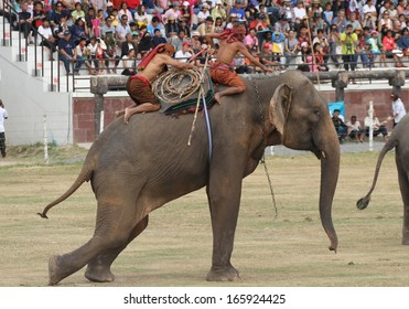 SURIN, THAILAND - NOVEMBER 16: Mahouts and their elephants displaying how to lasso an elephant at The Elephant Roundup Festival held in Surin, Thailand on the 16th November, 2013.