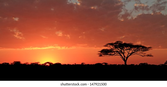 Surise over the Serengeti Plains, Tanzania
