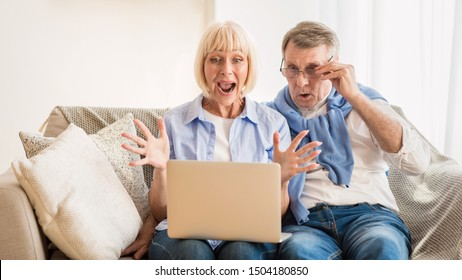 Surprised mature couple celebrating victory, winning online auction bid looking at laptop, free space