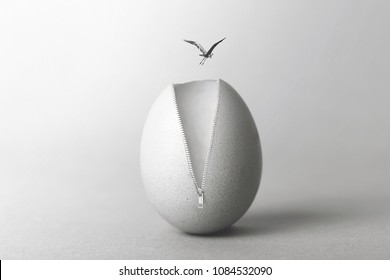 surreal black and white egg