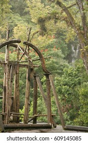 Surreal botanical adventure park in Xilitla Mexico; Edward James Las Pozas