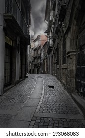 Surreal cityscape. Empty old street from Porto, Portugal, with a mysterious cat on the foreground.