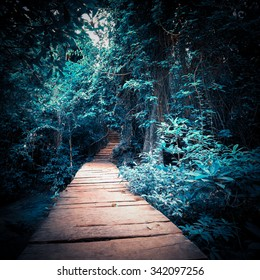 Surreal colors of mystery night at deep fantasy forest. Wooden road path way through tropical trees. Concept landscape for mysterious background