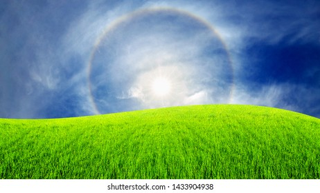 Surreal fantasy extraterrestrial landscape. Digitalart artwork. Sun halo in the blue sky around the sun over the green field. Natural phenomenon. Green grass on meadow in summer sunny day