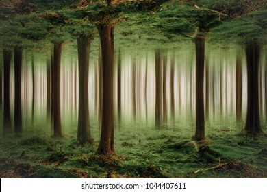 Surreal forest landscape
