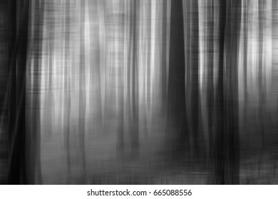 Surreal forest at night.