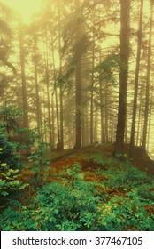 Surreal forest scene: illustration