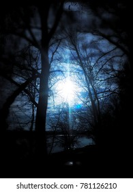 Surreal moonlight at the river side with trees