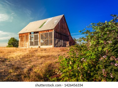 Surrey, British Columbia / Canada - June 16, 2019: A barn in the Tynehead Regional Park on a beautiful spring evening.  The barn houses displays of old farm machinery from the BC Farming Museum