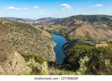 Surrounding landscape near the village of Sao Joao da Pesqueira, Portugal. Concept for travel in Portugal and most beautiful places in Portugal.