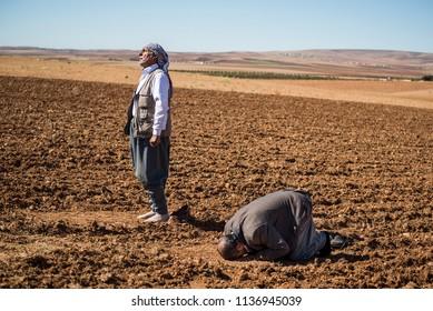 Suruc, Turkey - October 21, 2014. Kurdish refugees from Kobani pray inside a field, on a hill which overlooks Kobani, Syria, near the Turkish town of Suruc, at the Turkey-Syria border.
