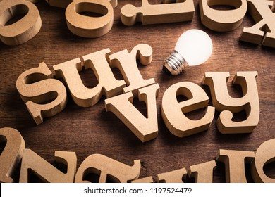Survey word in scattered wood letters with glowing white light bulb