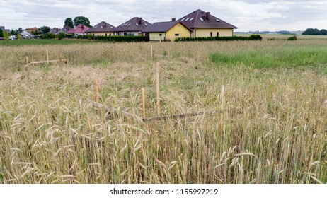 A surveyor's outline of a singlace-family home in a field of grain - Shutterstock ID 1155997219