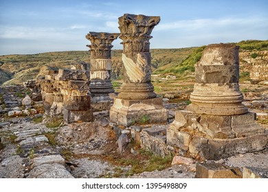 Susita Ruins,  the Golan Heights, Hippos, Israel