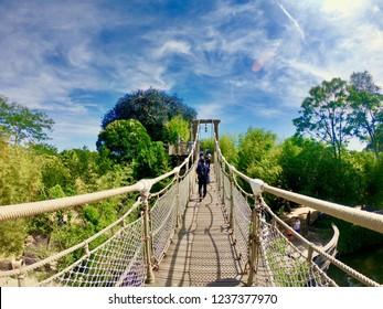 Suspended bridge disneyland paris