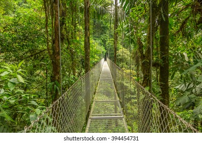 Suspended bridge at natural rainforest park, Costa Rica