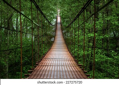 Suspension bridge, Crossing the river, ferriage in the woods