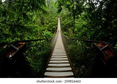 Suspension bridge in North Vancouver