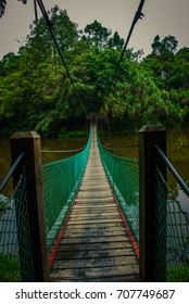The suspension bridge over the lake in the summer, Borneo, Sabah Malaysia