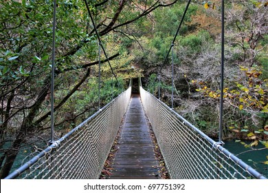 Suspension bridge over the river Eume, A walk through the forest of the natural park of Eume, Fragas do Eume,Pontedeume, Galicia, Spain, monastery, paths, oak forest,