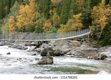 Suspension bridge over a stream