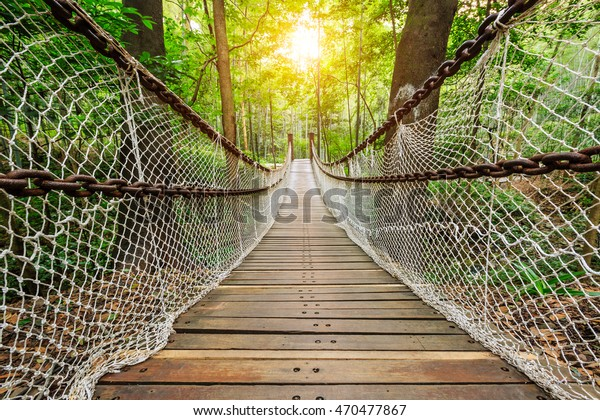 suspension bridge in the quiet forest