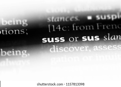 suss word in a dictionary. suss concept. - Shutterstock ID 1157813398