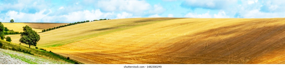 Sussex, English landscape, rolling hills, golden color of the crops growing in the fields, the light is low casting high lights and shadows on to of the hills, blue sky and clouds, Lewes, Sussex, UK