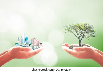 Sustainable development goals (SDGs) concept: Two human hands holding big tree and city over blurred green forest background
