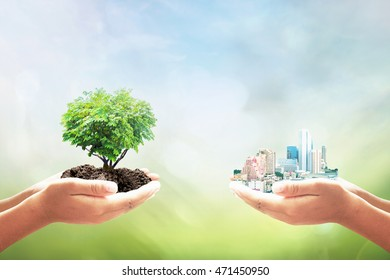 Sustainable development goals (SDGs) concept: Two human hand holding heart shape of tree and big city over blurred green nature background