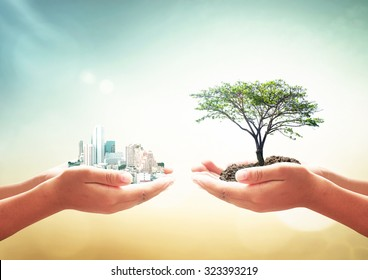 Sustainable development golds (SDGs) concept: Two human hands holding big tree and city over blurred nature background
