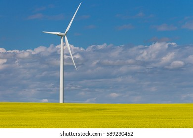 Sustainable energy industry, a Modern windmill , turbine, towers over a field of brightly blooming yellow canola in agricultural area of Alberta, Canada