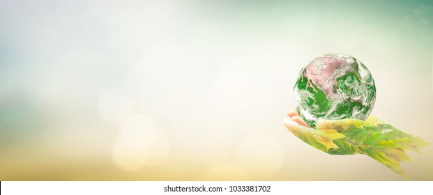Sustainable environment concept: Double exposure hands of tree and earth global on blurred nature background. Elements of this image furnished by NASA