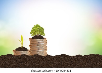 Sustainable finance concepts.tree on a pile of coins is planted in the soil.blur natural background blur