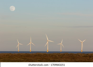 Sustainable resource. Offshore wind farm turbines generating 24hr electricity night and day. UK coastal scene with green energy turbines and daytime moon. Around the clock constant power generation.