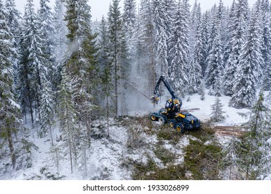 Sustaineable timber harvesting in Norway during wintertime