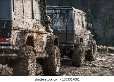 SUV covered with mud stands behind another one. Dirty offroad cars on dark forest background. Crossover after racing on country road, back view. Extreme entertainment concept.