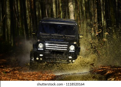 SUV or offroad car on path covered with leaves crossing puddle with water splash. Car racing in autumn forest. Offroad race on fall nature background. Extreme, challenge and 4x4 vehicle concept