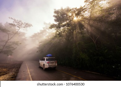 SUV pickup car vehicle driving uphill at scenic local street with mist, sun rays light, and beautiful green forest. Family road trip travel to Phu Chi Fa, Chiang Rai, Thailand.