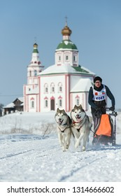 Suzdal, Russia - February 24, 2018: Dog sled racing. A man with two dogs on a snowy track.
