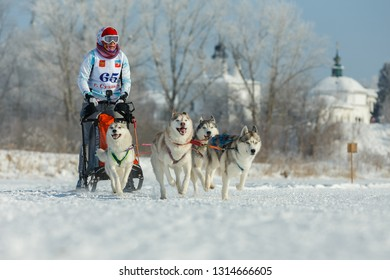Suzdal, Russia - February 24, 2018: Dog sled racing. A woman controls a sleigh drawn by four Husky dogs.