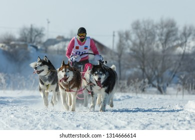 Suzdal, Russia - February 24, 2018: Dog sled racing. A woman controls a sleigh drawn by husky dogs.