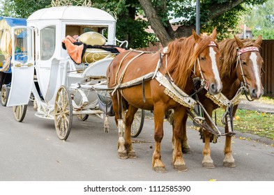 SUZDAL, RUSSIA - SEPTEMBER 9, 2017: Horses with a carriage for walking around the city of Suzdal.