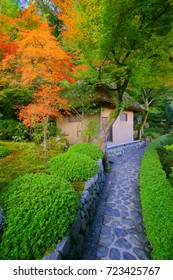 Suzumushidera is the most aptly named temple in Kyoto. This Temple is feed bollworm all year round that can hear the bells tweet . scenery of colorful Autumn maple foliage in Japan November.