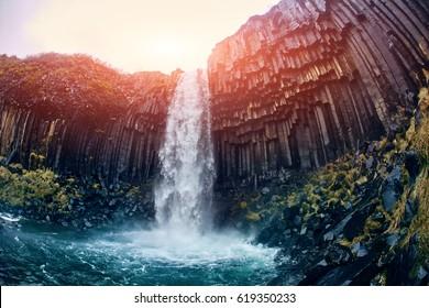 Svartifoss Black Fall , Skaftafell, Iceland. Dramatic waterfall surrounded by dark basalt lava hexagonal columns.