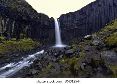 Svartifoss Waterfall And Basalt Columns In The National Park Of Vatnajokull, Iceland.