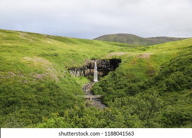Svartifoss waterfall is situated in Skaftafell,  Vatnajökull National park, South Iceland. Water flowing down the cliff of black columnar basalt formations. Romantic, scenic oasis in the greenery.