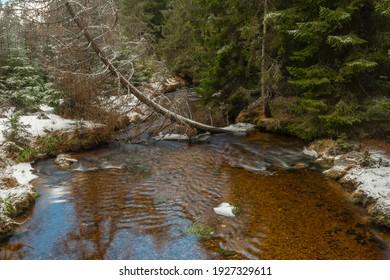 Svetla creek in winter snowy cold morning with sunshine color light - Shutterstock ID 1927329611